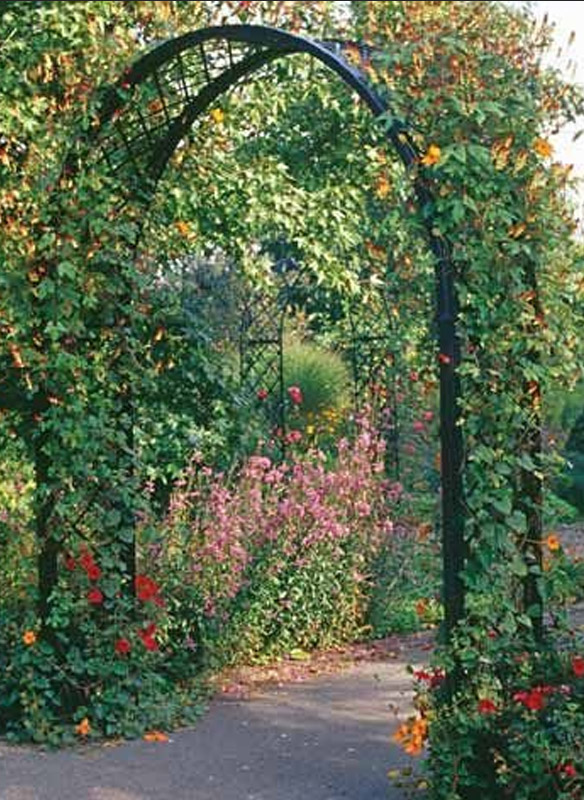10-romanischer-rosenbogen-portofino-original