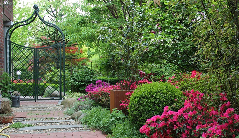 Metall Rosenbogen mit zweiflügeligem Tor im Frühlingsgarten