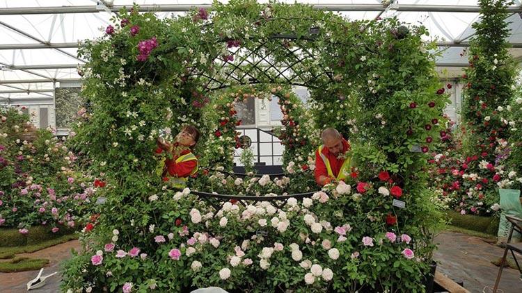 Mit Rosen dekorierter Damen Pavillon
