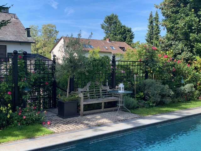Rankgitter Bauhaus als Sichtschutz am Pool