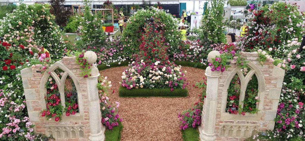 Chelsea Flower Show Beales Roses 2019