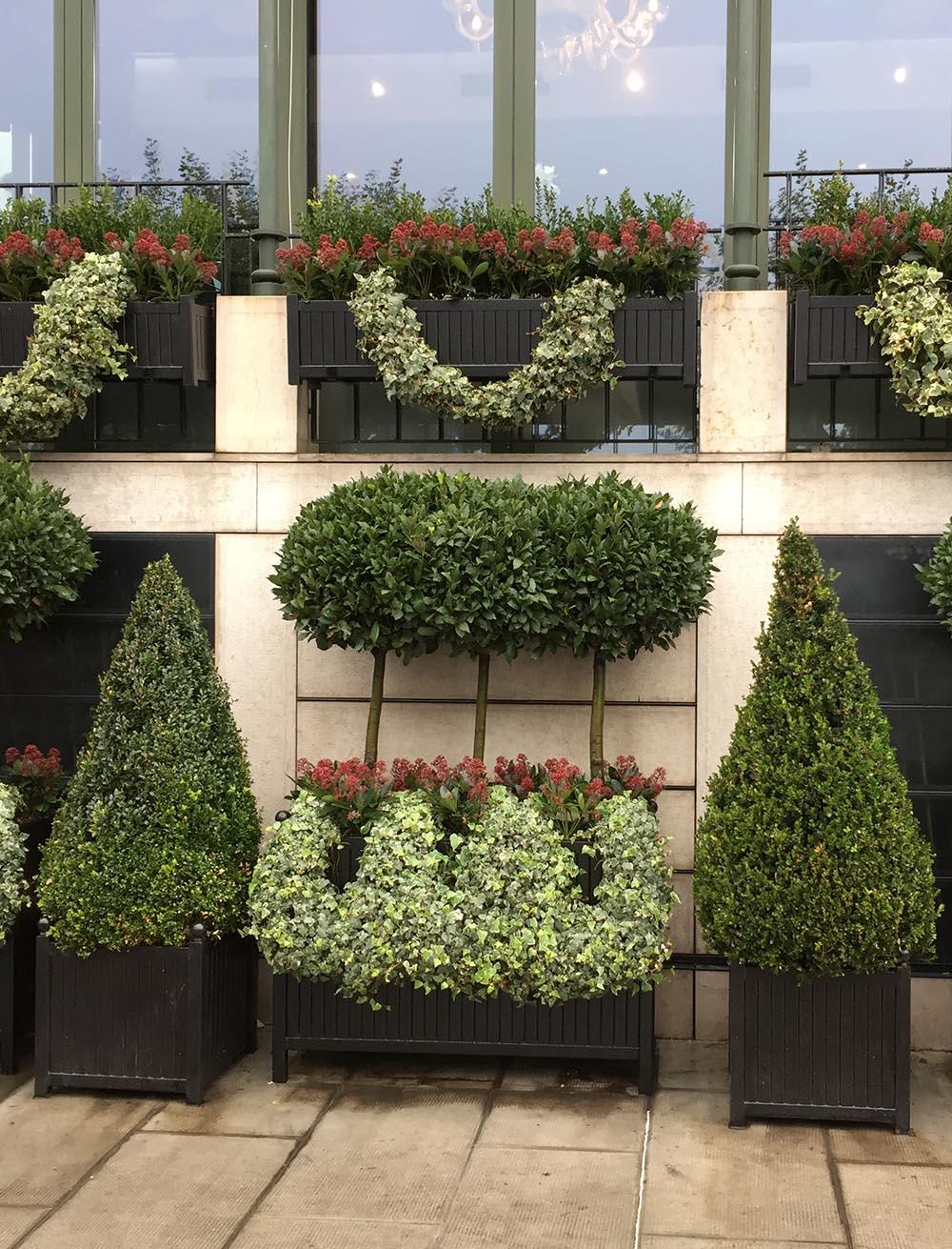 Große und Lange Versailler Pflanzkübel auf Gnfer Hotel Terrasse
