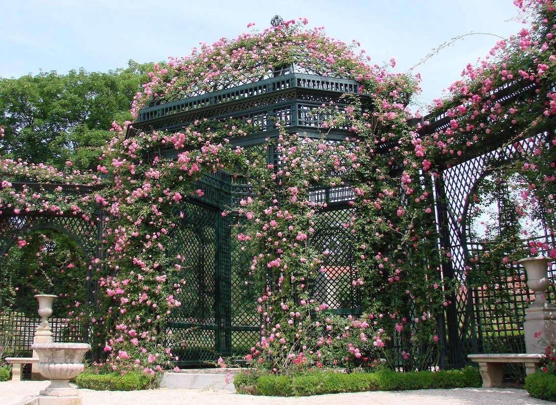 La Roseraie du Val-de-Marne à l'Haÿ-les-roses1 Kopie